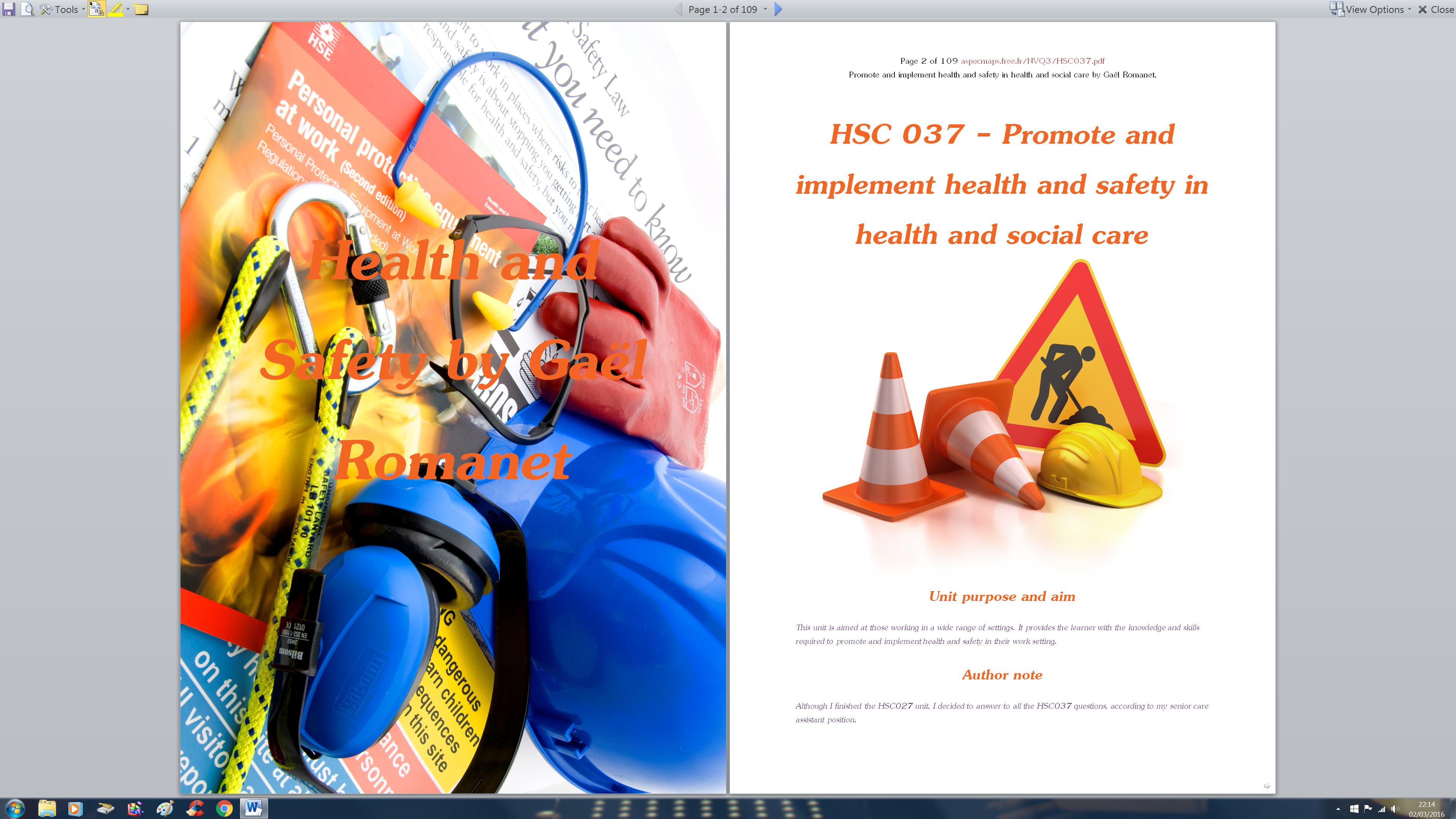 promote and implement health and safety essay